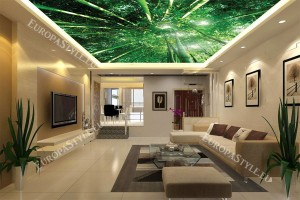 Фототапети бамбукова гора отдолу за таван