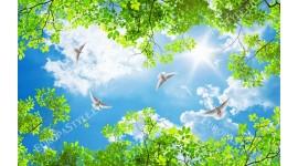 Фототапет за таван с небе и зелени клонки
