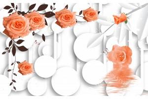 Фототапети 3Д модел с рози и кръгове на бял фон в 2 цвята