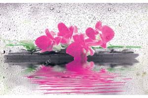 Фототапети спа камъни с цветя с водни капки