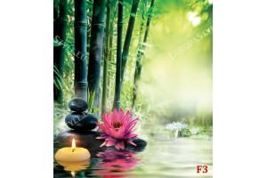 Фототапети фон бамбук с нежно цвете и черни камъни