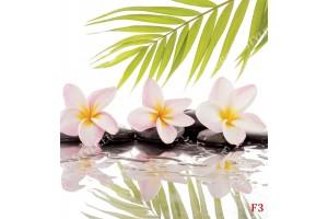 Фототапет спа камъни , листа и розов цвят