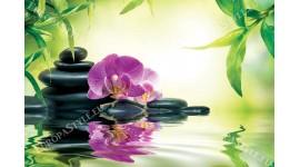 Фототапети спа композиция орхидея, камъни и листа