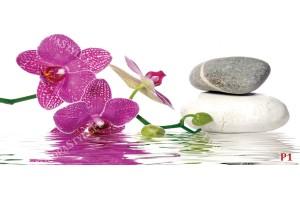 Фототапет орхидея и спа камъни във вода