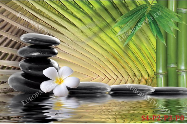 Фототапет спа камъни в черно и листа ветрило