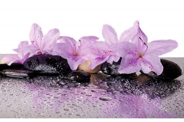 Фототапет спа камъни с прекрасни лилави цветя