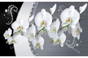 Фототапети бели орхидеи с диаманти и орнаменти в 2 цвята