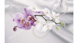 Фототапети клонка орхидея в 2 цвята на фон коприна с перли