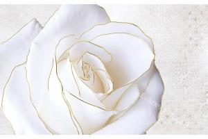Фототапети голяма бяла роза със златен кант