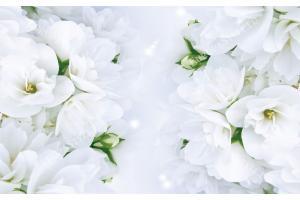 Фототапети нежен пролетен цвят в сив оттенък