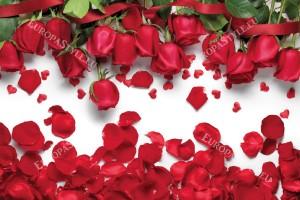 Фототапети красиви рози и сърца светъл фон