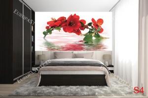 Фототапети клонка червен цвят с водно отражение