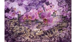 Фототапети лилави орхидеи и подводни камъни