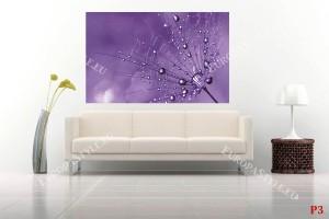Фототапети голямо лилаво глухарче на лилав фон