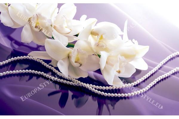клонка орхидея цвят крем на ефектна лилава основа