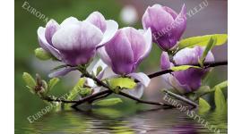 Фототапет лилаво магнолия