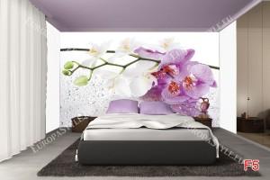 Фототапет клонка орхидеи в лилава гама
