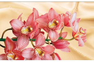 Фототапети коралова орхидея на фон коприна в 2 цвята
