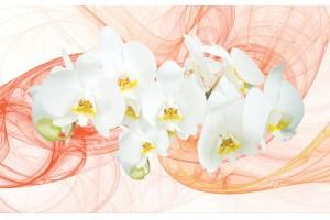 Фототапети бели орхидеи на оранжев фон-абстракт