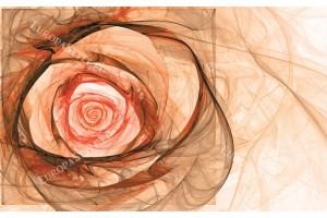 Фототапети модерна абстракция роза в 2 цвята