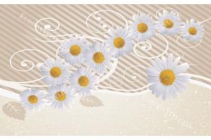 Фототапети бели маргарити с орнаменти в 2 цвята