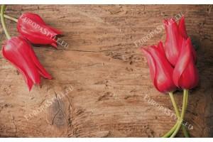 Фототапет червени лалета на дървена основа