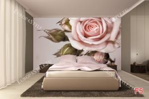 Фототапети светло розова роза
