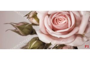 Фототапет-30% размер 250 см-107 см - Роза