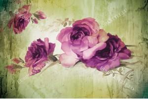 Фототапети рисувана композиция с лилави рози на фон в 2 цвята