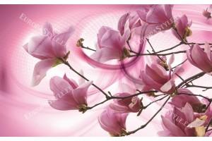 магнолия дървесна клонка на розов фон 2 варианта