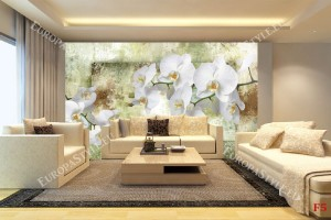 Фототапети прекрасни бели орхидеи на зелена мазилка