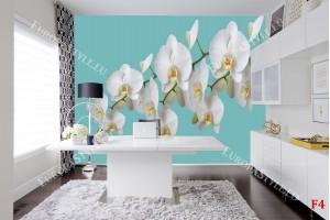 Фототапет клонка орхидеи на син фон