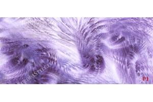Фототапет пера в лилаво