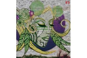 Фототапети тухлена стена графити със женско лице в 2 цвята