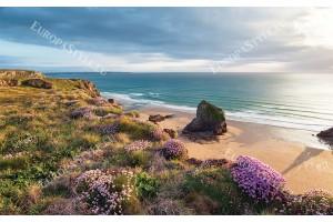 красива морска панорама и бряг поляна