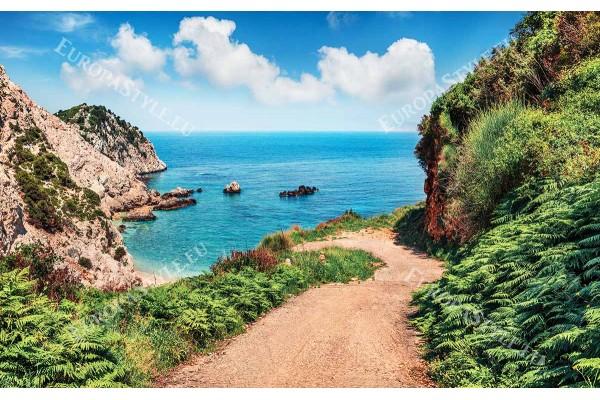 Фототапет с пътека към плажа с морска панорама