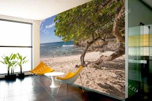 Фототапети морски пейзаж плаж със самотно дърво
