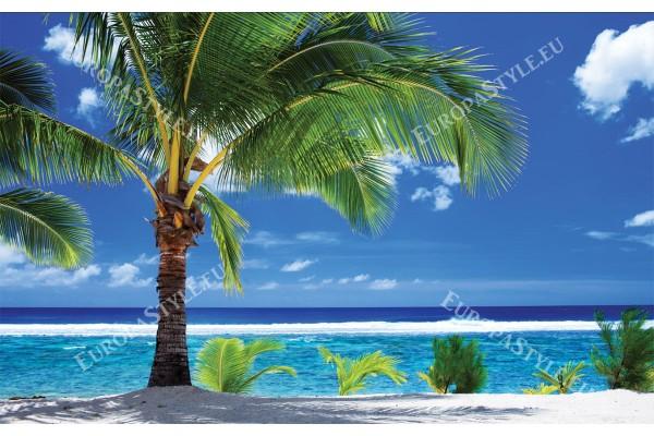 Фототапети слънчев изглед с красива палма