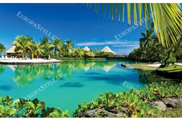 Фототапети красива тропическа гледка с палми и вили