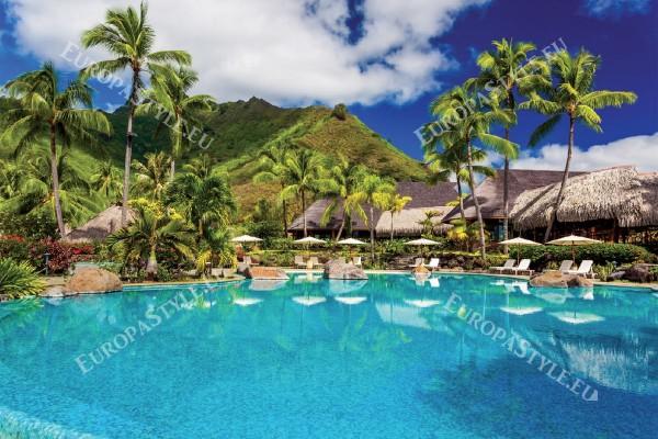 Фототапети изглед палми с басейн 2