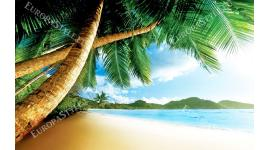Фототапет изглед палми и бряг близък план