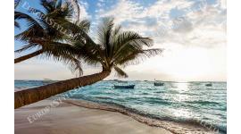 Фототапет море по залез с поглед върху палма и лодки