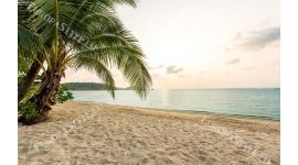 Фототапет морски пейзаж пясъчен бряг в 2 светли тона