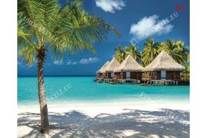 Фототапет морски бряг с тропически къщи и палма на преден план