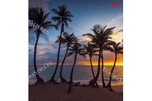 Фототапети нощен залез с палми океан син