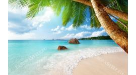 Фототапет пейзаж изглед под палма с лазурно море