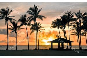 Фототапет крайбрежни палми нощен изглед