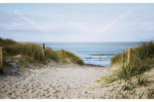 Фототапети морски пейзаж с дюни и пътека