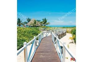 плаж с пътека мост тропическа гледка море