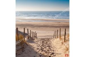 Фототапети слънчеви морски дюни пътека модел 2